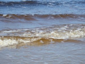 №13 «Во нашем во морюшке во Белом Промышляют зверя морского…»