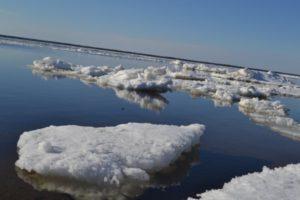 №29 «А льды наши зимние блестят, будто браманты, Морозы выигрывают будто в струны серебряные…»