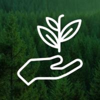 Экотехнопарк «Шиес»: несколько простых вопросов и ответов