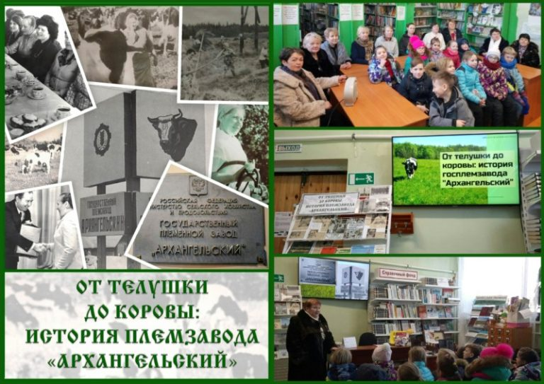«От телушки до коровы: история племзавода «Архангельский»