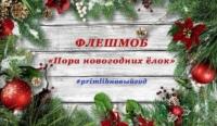 Флешмоб «Пора новогодних ёлок»