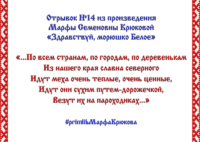 Районный семейный online-конкурс «Жемчужное слово Русского Севера» – отрывок №14